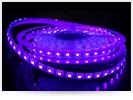 Ver nuevos rollos de led con tonalidad ultravioleta