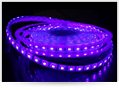 See new ultraviolet led strips